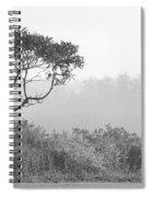 Dramatic Tree Spiral Notebook