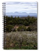 Draney Orchard Pano Spiral Notebook