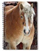 Dreadlocks Spiral Notebook