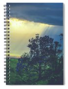 Dream Of Mortal Bliss Spiral Notebook