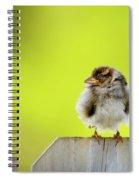Dream Sparrow Spiral Notebook