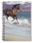 Dreamer On The Beach Spiral Notebook
