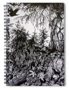 Dreaming Alaska.part One Spiral Notebook