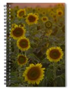 Dreaming In Sunflowers Spiral Notebook