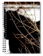 Dreaming Of Black Beauty Spiral Notebook