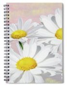 Dreaming Of Daisies Spiral Notebook