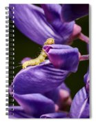 Dreaming Of Wings Spiral Notebook