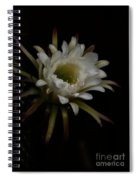 Dreams Of Night Spiral Notebook