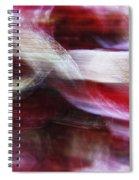 Dreamscape-3 Spiral Notebook