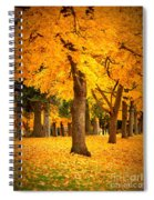 Dreamy Autumn Day Spiral Notebook