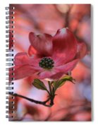 Dreamy Dogwood Spiral Notebook