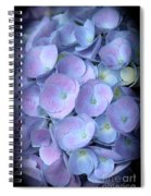 Dreamy Hydrangea In Purple And Blue  Spiral Notebook