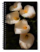 Dreamy Lilies Spiral Notebook