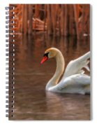 Dreamy Spiral Notebook