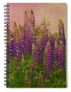 Dreamy Lupin Spiral Notebook