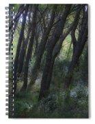 Dreamy Marjan Forest In Croatia Spiral Notebook