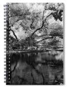 Dreamy Morning Spiral Notebook