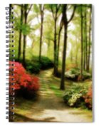 Dreamy Path Spiral Notebook