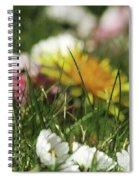 Dreamy Spring Spiral Notebook