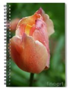 Dressed In Raindrops Spiral Notebook