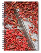 Dried Chili Peppers Spiral Notebook