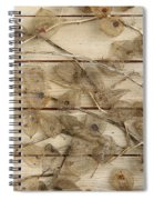 Dried Fruits Of The Cape Gooseberry Spiral Notebook