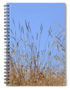 Dried Grass Blue Sky Spiral Notebook