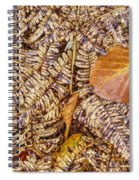 Dried Leaf On The Fern Spiral Notebook