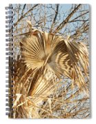 Dried Palm Fronds In The Wind Spiral Notebook