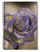 Dried Rose In Sienna And Ultra Violet Spiral Notebook