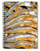 Dried Small Fish 3 Spiral Notebook
