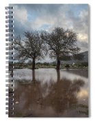 Dried Tree Reflected Spiral Notebook