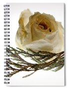 Dried White Rose Spiral Notebook