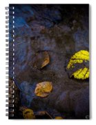 Drifter Spiral Notebook