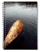 Drifting  Spiral Notebook