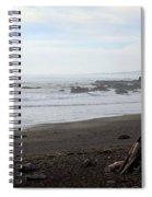 Driftwood And Moonstone Beach Spiral Notebook