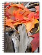 Driftwood Autumn Leaves Art Prints Baslee Troutman Spiral Notebook