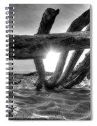 Driftwood B/w Spiral Notebook