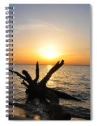 Driftwood Beach Spiral Notebook