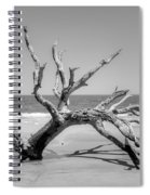 Driftwood Beach In Black And White Spiral Notebook
