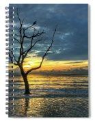 Driftwood Beach Sunrise Jekyll Island Georgia Spiral Notebook