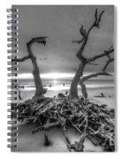 Driftwood Black And White Spiral Notebook