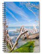 Driftwood C141354 Spiral Notebook