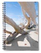 Driftwood C141414 Spiral Notebook