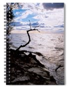 Driftwood Dragon-barnegat Bay Spiral Notebook