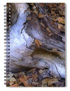 Driftwood In Lahonda Spiral Notebook