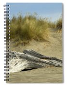Driftwood Spiral Notebook