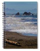 Driftwood Log Spiral Notebook