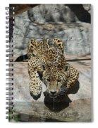Drinking Jaguar Spiral Notebook