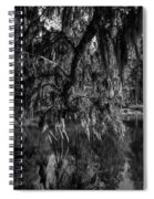 Drippin With Spanish Moss At Middleton Place Spiral Notebook